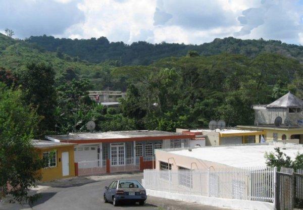 الاستمتاع بورتوريكو 111104111300VN7H.jpg