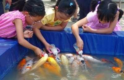 أسماك ترضع رضاعات الاطفال صور 111217175900HftN.jpg