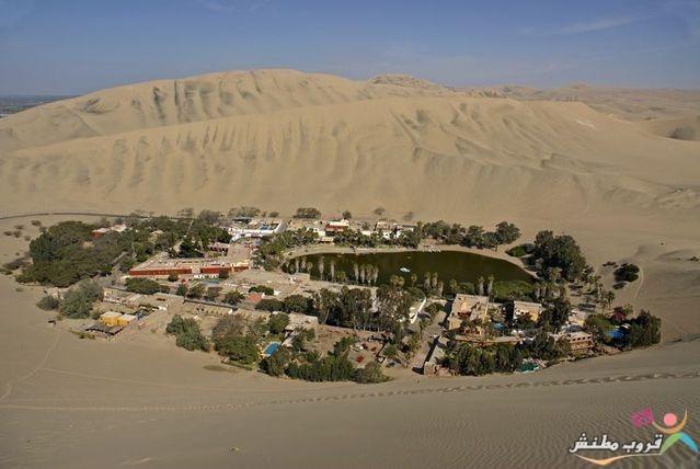 الخضراء الصحراء 120312143530tIWP.jpg