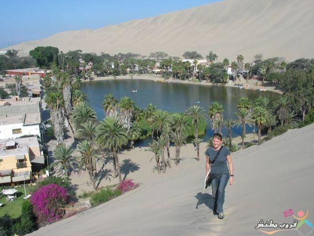 الخضراء الصحراء 1203121435314CKG.jpg
