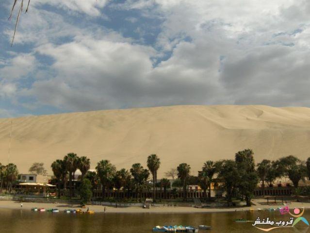 الخضراء الصحراء 1203121435327euL.jpg
