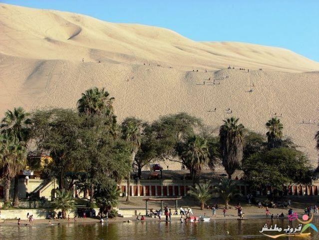 الخضراء الصحراء 120312143532Bnvb.jpg