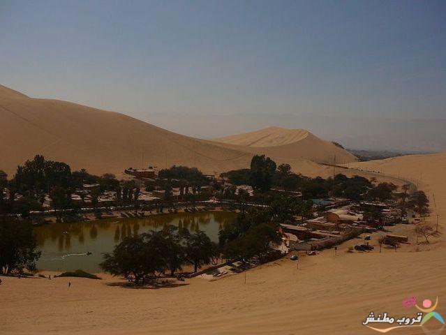 الخضراء الصحراء 120312143532jnJ5.jpg