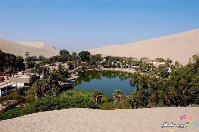 الخضراء الصحراء 120312143533ENX3.jpg
