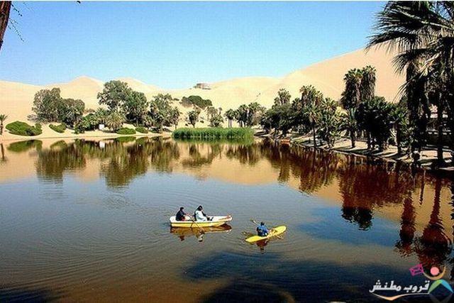 الخضراء الصحراء 1203121435343I8P.jpg