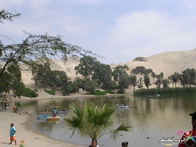 الخضراء الصحراء 12031214353571h0.jpg