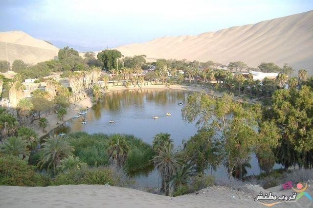 الخضراء الصحراء 120312143535pYQR.jpg