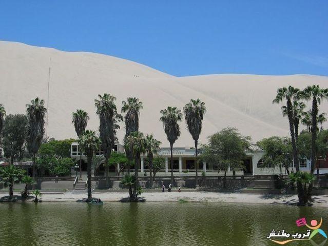 الخضراء الصحراء 120312143536wKOa.jpg