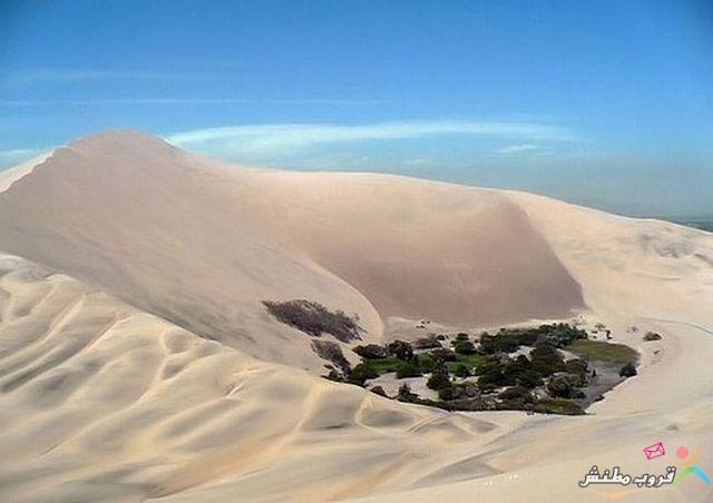 الخضراء الصحراء 120312143537MjFV.jpg