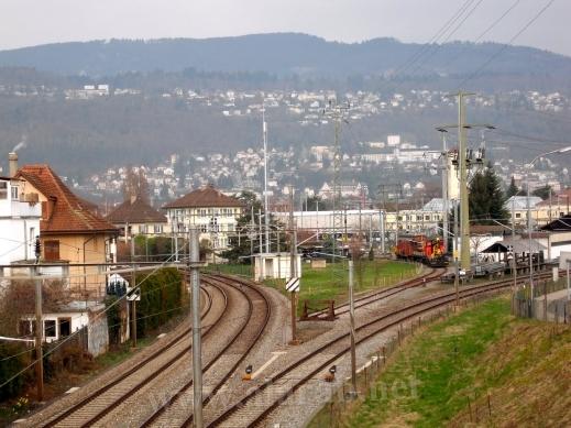 السويسرية 120321150032A8Vo.jpg