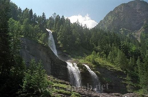 السويسرية 120321150032x3Ob.jpg