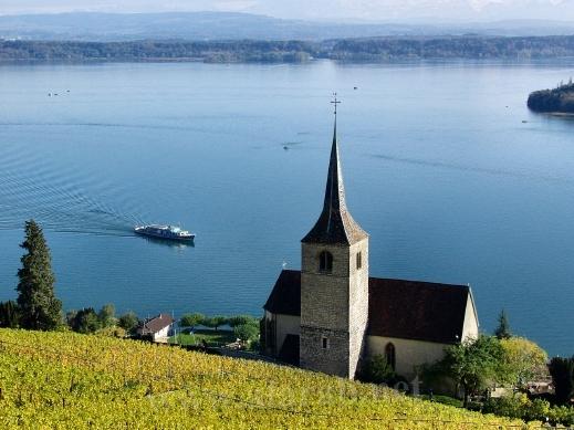 السويسرية 120321150034GFRA.jpg