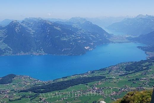 السويسرية 120321150034tS4p.jpg