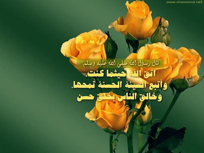 خلفيات اسلاميه 2013جديد خلفيات اسلاميه 2013 120505122357N2Yt.jpg