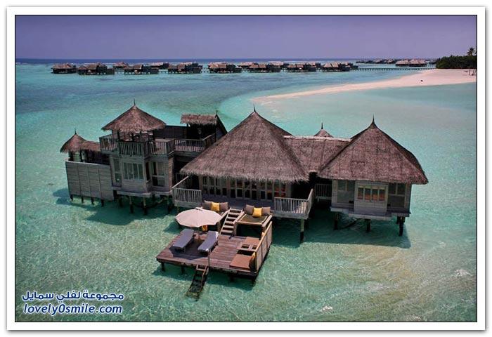 المالديف 2013,صور المالديف 2013 1208132308171js8.jpg