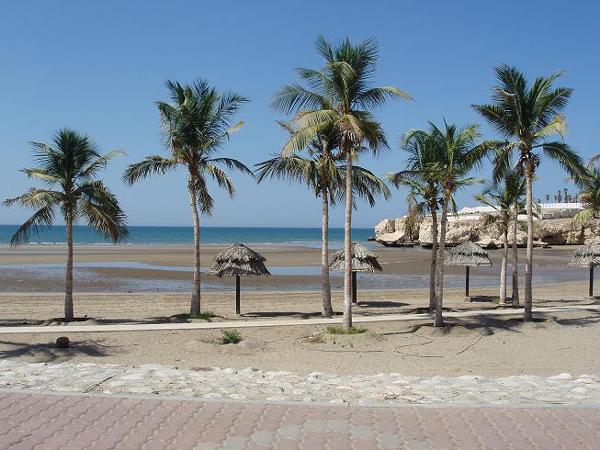 الشواطئ البحريّة 2013 السياحة 2013 120820150505S6pA.jpg