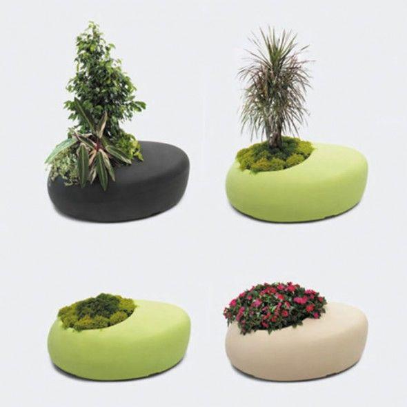 نباتات الحديقة للديكور 2012 دلعى
