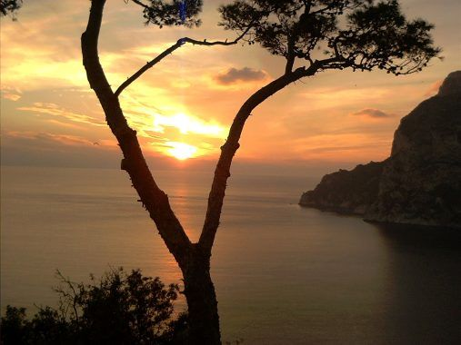 capri الايطالية السياحة capri 1208271110101hnv.jpg