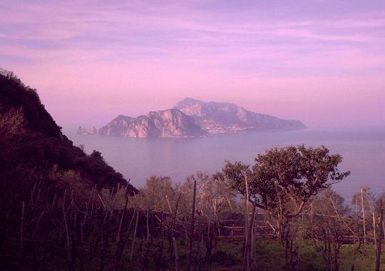 capri الايطالية السياحة capri 1208271110105UEK.jpg