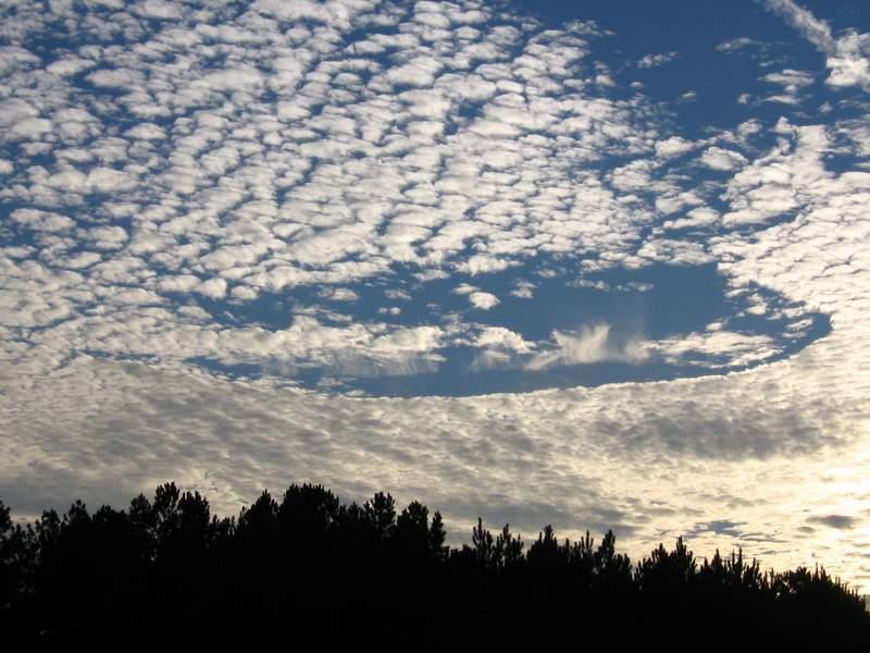 من معجزات الله 2013 ، صور من معجزات الله فى الارض 121002115404P6lT.jpg