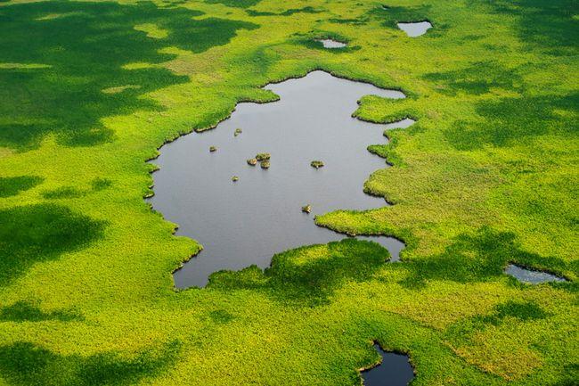 مشاهدة صور غريبة 2012-صور مستنقعات سد في جنوب السودان 2012- 1210021205380TTw.jpg