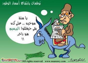 عن المصريين 2013 , صور كاريكتير عن المصري 2013 121002123849BbIQ.img