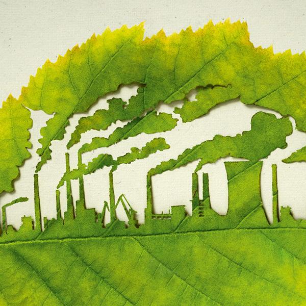 صور التلوث البيئي على ورقة شجر حلوة 2013 121002124110FORz.jpg
