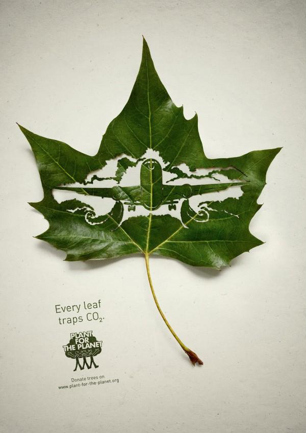 صور التلوث البيئي على ورقة شجر حلوة 2013 121002124110Tzvp.jpg