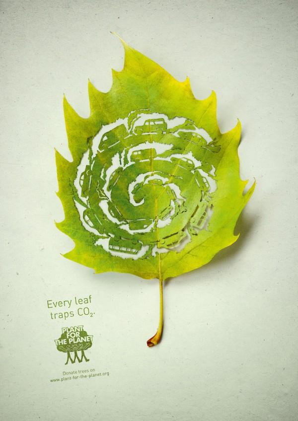 صور التلوث البيئي على ورقة شجر حلوة 2013 121002124110kC0t.jpg