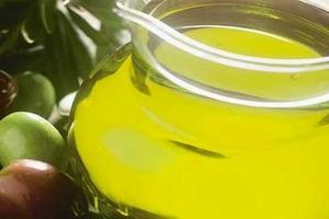 الزيتون الزيتون الزيتون 121002171849XMmf.jpg