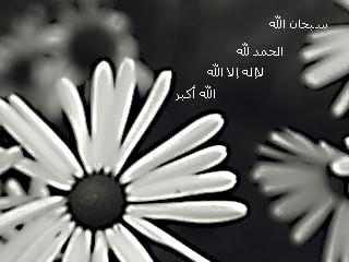 صور خلفيات اسلامية 2013 121003124531oc67.png