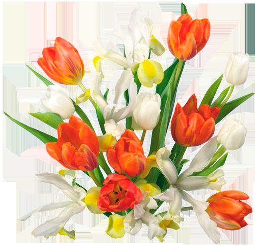 في روحك  وردة لمن   ترسل عطرها  / إهداء  لمن تحب بلغة الورد 121016222533H18w
