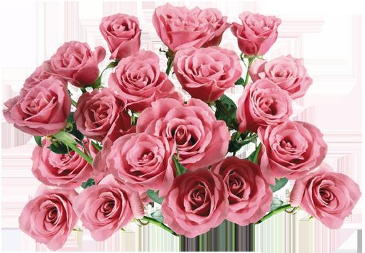 في روحك  وردة لمن   ترسل عطرها  / إهداء  لمن تحب بلغة الورد 121016222533KJjN