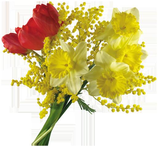 في روحك  وردة لمن   ترسل عطرها  / إهداء  لمن تحب بلغة الورد 121016222533abPb