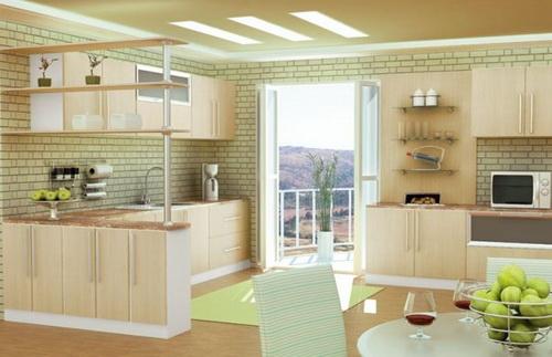 Modern Kitchen Designs 2013 1210262152300LJ5.jpg