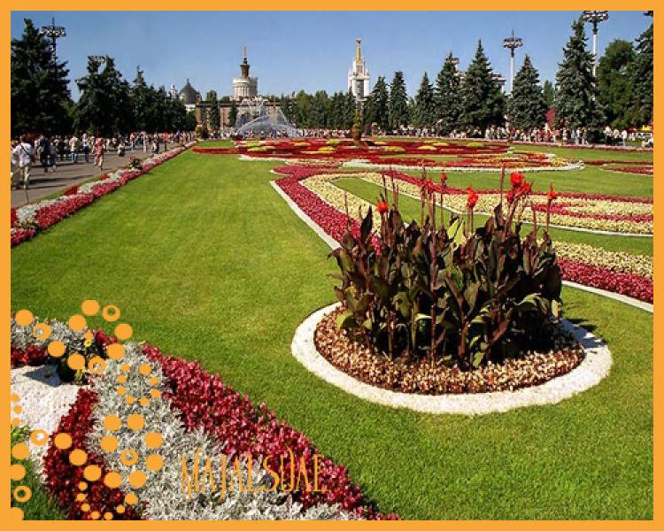 لروسيا2013 121106215753T8ps.jpg