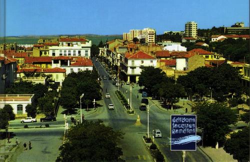 بالجزائر 2013 121107214115svMO.jpg
