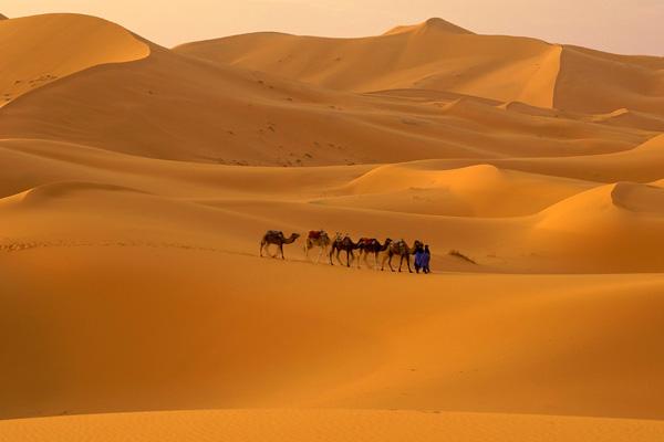 الصحراء 2013 121110205014BeRo.jpg