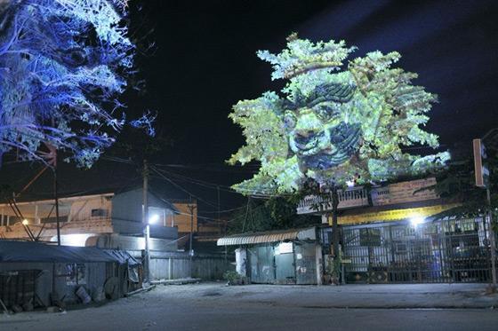بالصور اشجار كمبودية2013 121126222319KllW.jpg