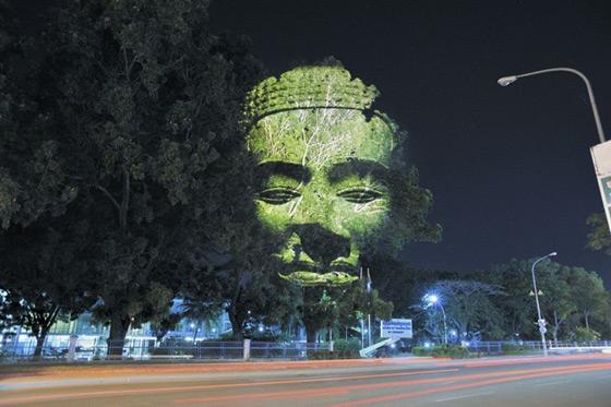 بالصور اشجار كمبودية2013 121126222320AmaM.jpg