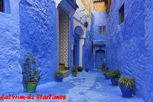 المغربية 2013 121127120056hm1Y.jpg