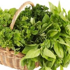 الأعشاب الخضراء 121209064601dXBF.jpg