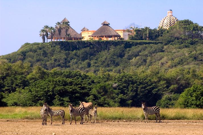 السياحة فى محميه 2013 130102101330eNN4.jpg