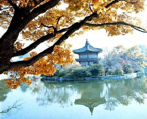 السياحة فى كوريا 2013 130102102846nPr9.jpg