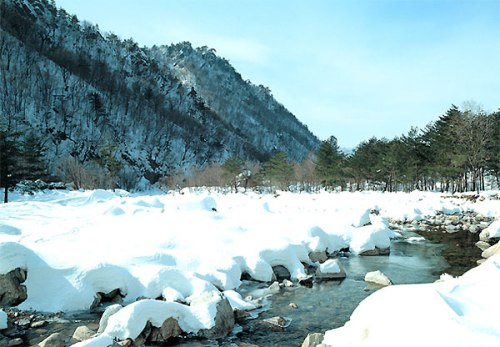 السياحة فى كوريا 2013 130102102846reYS.jpg