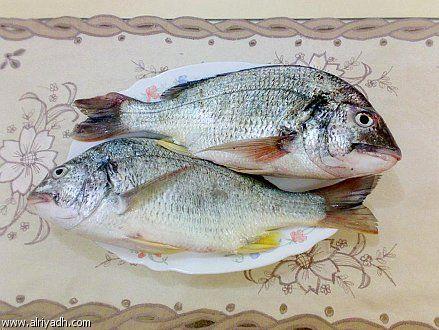 الغذائي 130307032917ppXU.jpg