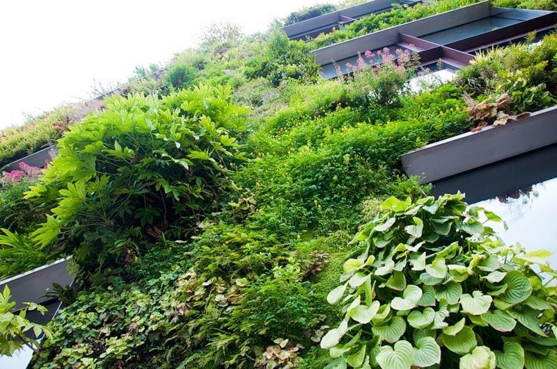 الحدائق العمودية 2013 ، صور حدائق حديثة 2014 130307233223PPBH.jpg