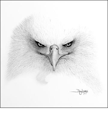 صور رسومات حيوانات مدهشه 2013 130308162136c83Z.jpg