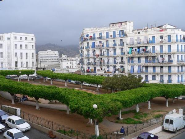 الجزائر 2013 130405220132s65f.jpg
