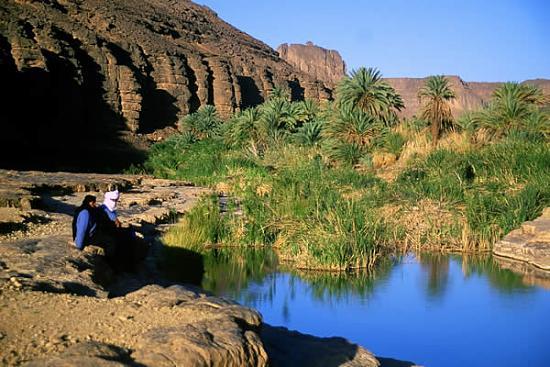 الجزائر 2013 130405220132xmDO.jpg
